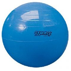 CLEARANCE 360 Gymnic Ball - 55cm